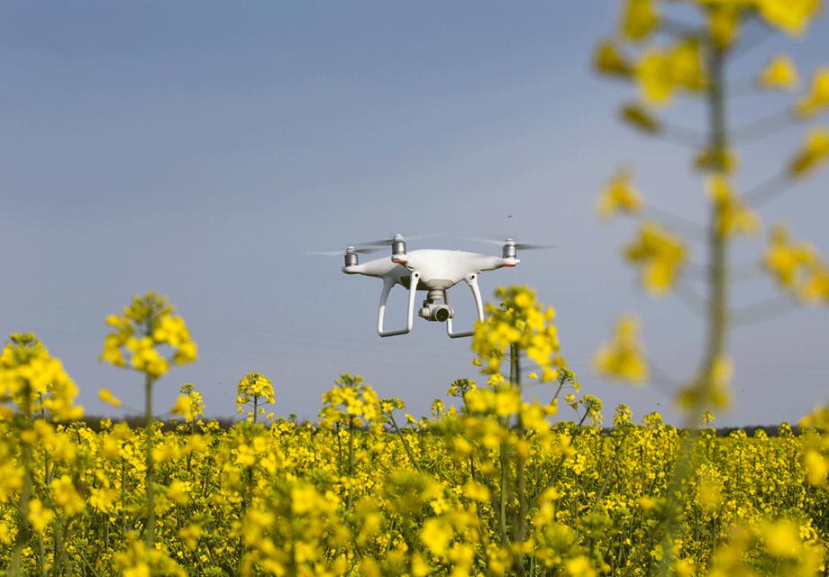Luftbild-Aufnahmen bieten ein weites Potential in der Landwirtschaft